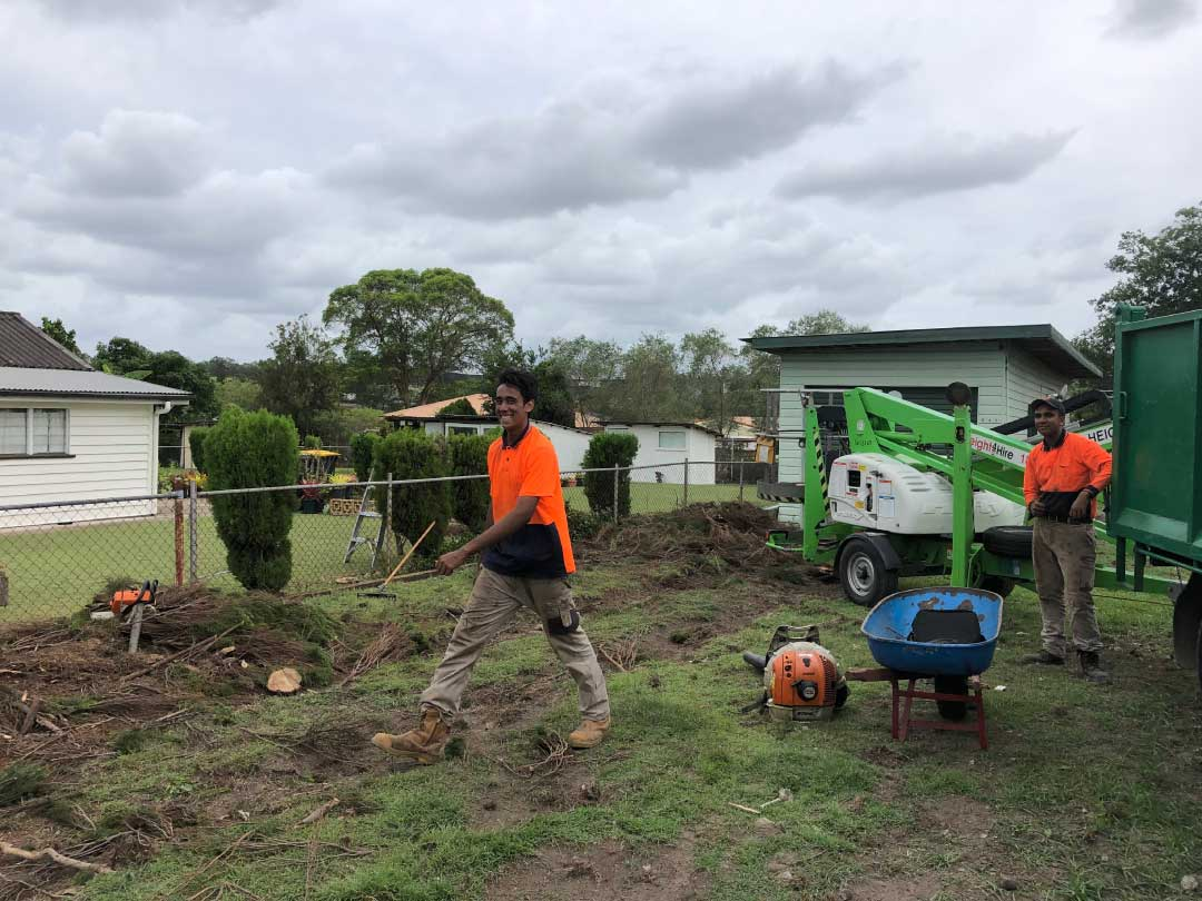 tree-lopping-services-brisbane-southside-02